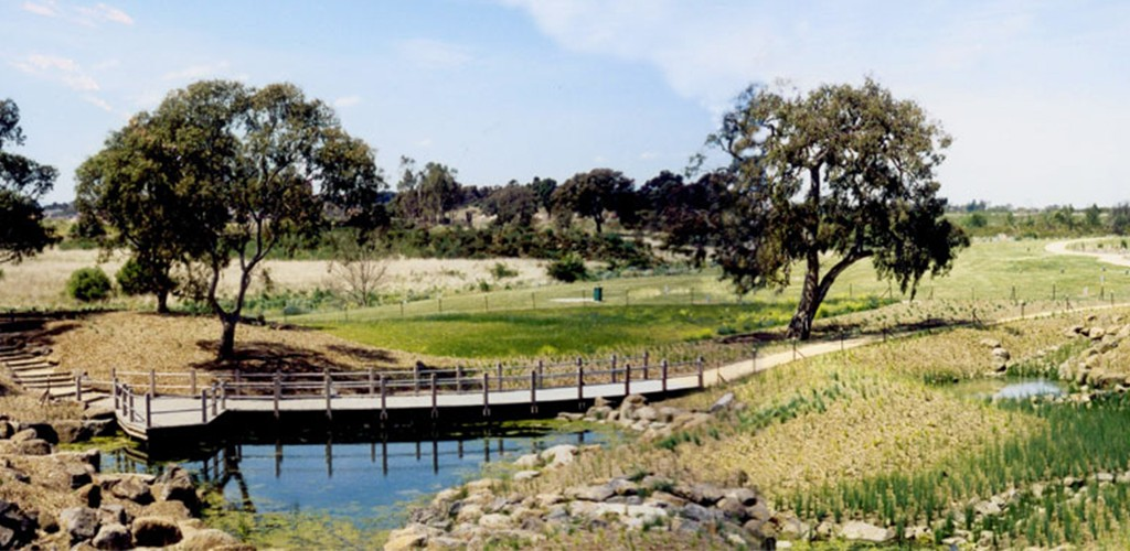 Thomastown East Reserve, wetland retrofit view on water and walking path