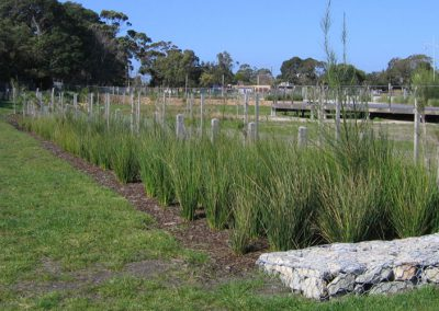 Bonbeach Retarding and Bioretention basins